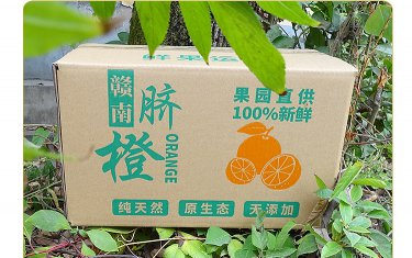 长沙橙子纸箱包装